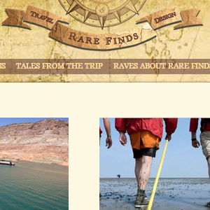 snapshot of rare finds travel website